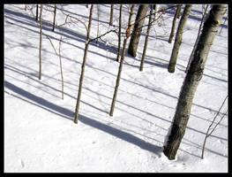 Minnesota Snow 04 by hamdiggy
