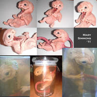 The Unborn Collage by MaryBunnie