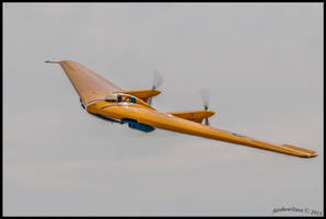 Wing 2013 by AirshowDave