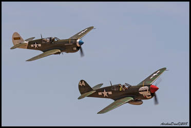 P-40 Warhawks by AirshowDave