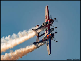 Yak 110 by AirshowDave