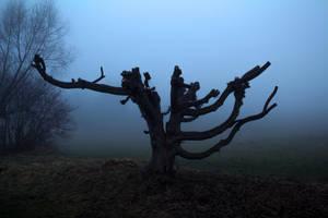Foggy Landscape 6 by SpellpearlArts