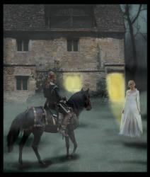 The Stolen Bride by Pailei