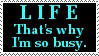 Busy Life by dragonstar10