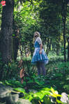 Alice in Wonderland by Enry500