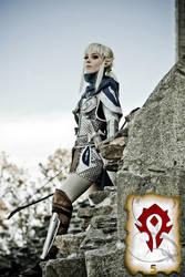 High Elf Shadow Warrior by NikitaCosplay