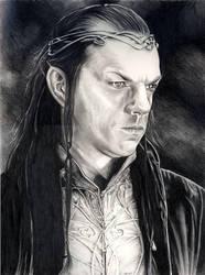 Elrond by nicolepellegrini