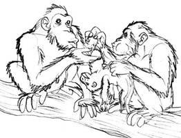 Animal Morality by Domain-of-Darwin
