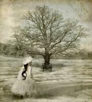 Winter Cometh by beanhugger