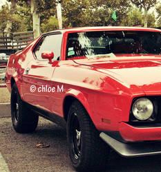 Mustang des Belles du Cap by vachebichon