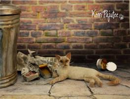 Miniature 1:12 cat sculpture - Wasabi by Pajutee