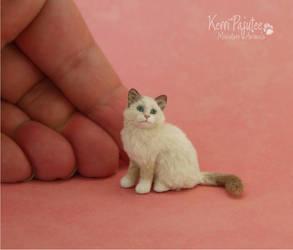 Ragdoll Kitten Scuplture 1:9 scale by Pajutee