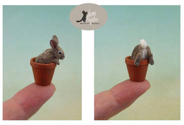Tiny Cottontail rabbit sculptures by Pajutee