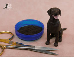 WIP Miniature Chocolate Labrador sculpt by Pajutee