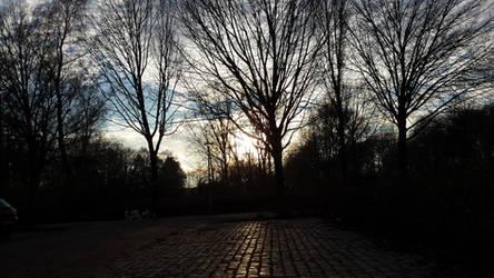 Burgemeester Godwaldt Park (NL) (20161208 152325) by ElifeGenc1969