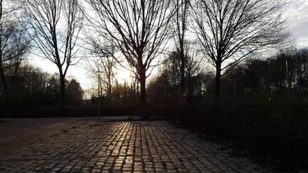 Burgemeester Godwaldt Park 2 (NL)(20161208 152347) by ElifeGenc1969