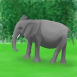 Elephant by joannastar