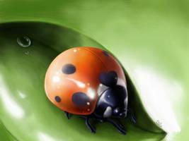 Ledyba/ladybuf by KagamiiX