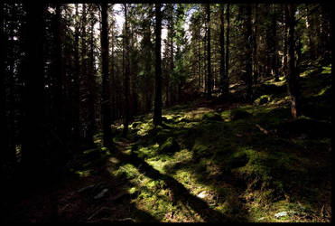 Arrival of Shadows by dvartdal