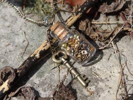 Steampunk bottle key necklace by Hiddendemon-666