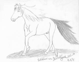 Holsteiner Sketch by KuschelGarou