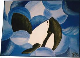 Orca by KuschelGarou