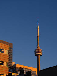 CN Tower From Where I work by KMourzenko
