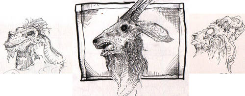 goat portraits by Happydeath