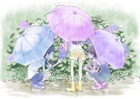 Hydrangea by hinaka1