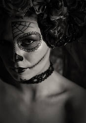 Sugar skull by starxdust