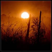 Sunrise by Basement127