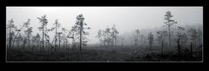 Misty Mire by Basement127