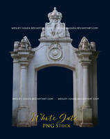 White Gate - PNG Stock by Wesley-Souza