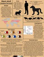 Black Wolf - Original Species Sheet by horse14t