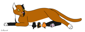 Leto X Shadow - Birth by horse14t
