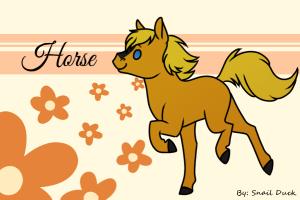 horse14t's Profile Picture