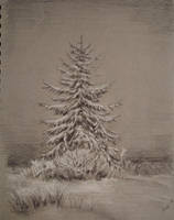 Winter wonderland by akarudsan