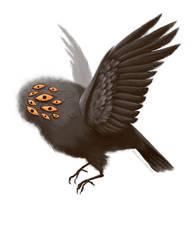 Little Bird, Little Bird by Ammonite-Amy