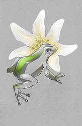 Pocket Frogs fanart by RE-main