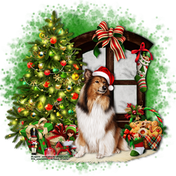 Christmas Collie by atouchoflacie