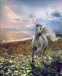 Joy of Spring by IllusionoftheDay