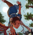 Spinning Bird Kick by M-GO
