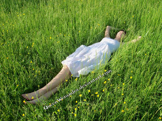 Day rest (2014) by QueenWerandra