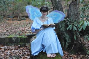 Faerie Queen reading (stock) (2014) by QueenWerandra