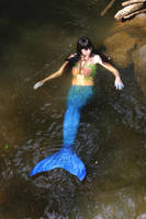 Mermaid in river (2015) by QueenWerandra