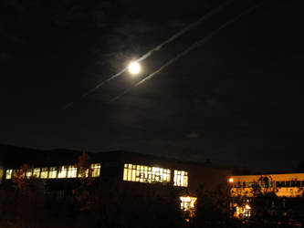 Moon's light by nexu22