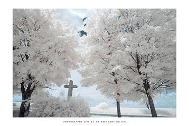Memento mori by DimensionSeven
