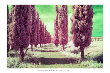 Tuscany IR - IV by DimensionSeven