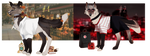 SALE Aesthetic Canines 1/2 OPEN | Only real money by Almondbreeze
