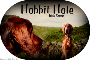 Hobbit Hole by itsjustmebre